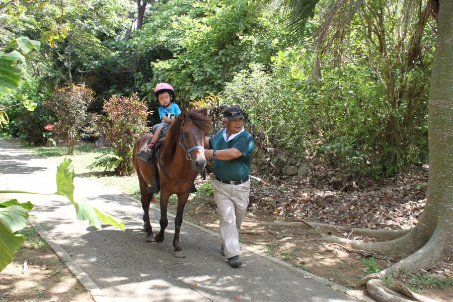 宮古馬乗馬体験